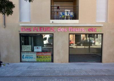 Enseigne avec lettres découpées pour Des fleurs des fleurs à proximité de Lyon par SES (Grigny -Lyon)