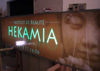 Vos enseignes à Lyon: Enseigne lumineuse avec caisson de façade dans le Rhône pour Hekamia (Givors 69700) par SES à Grigny (Lyon)